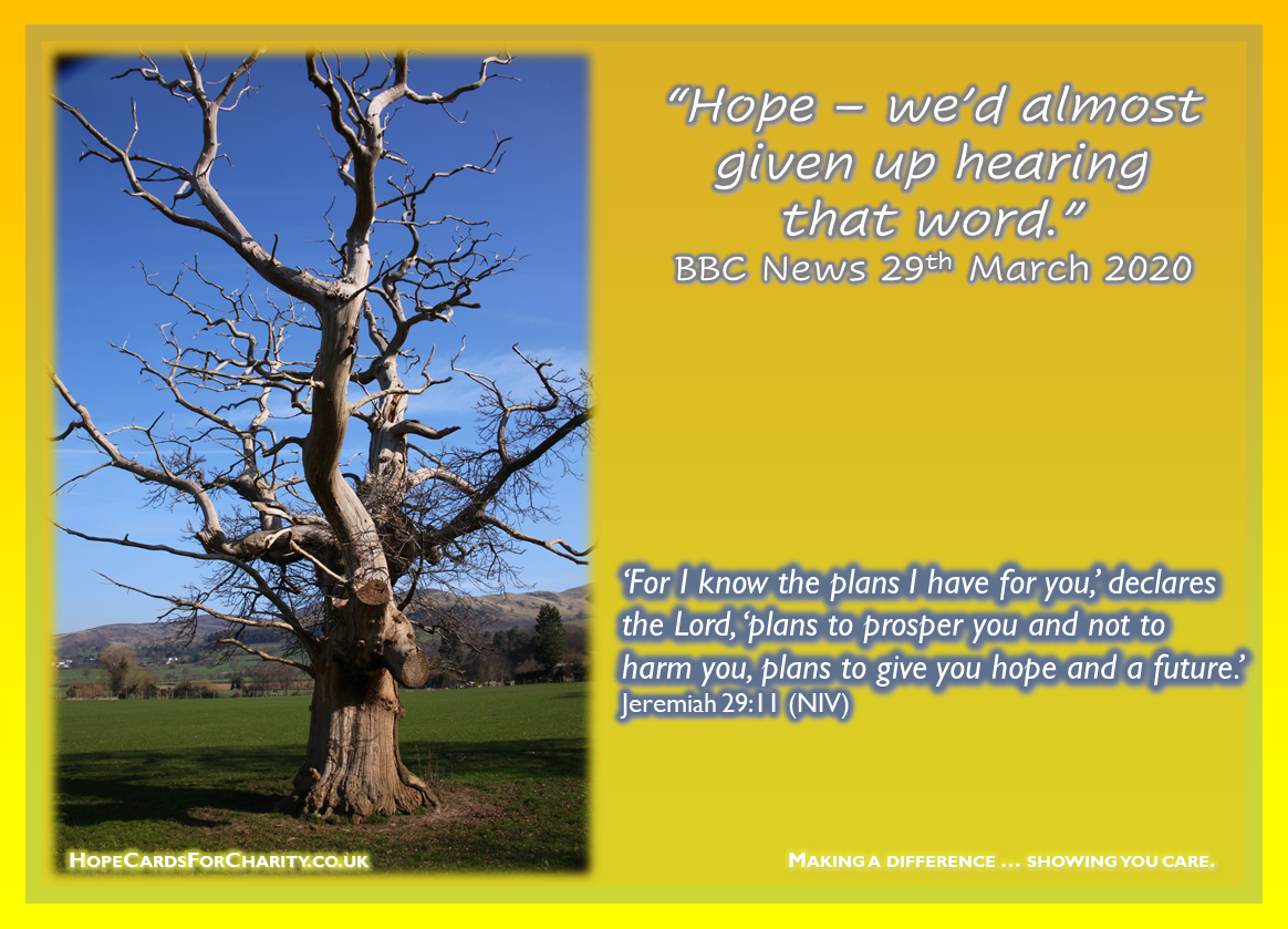 Hope - we'd almost given up hearing that word - For I know the plans I have for you