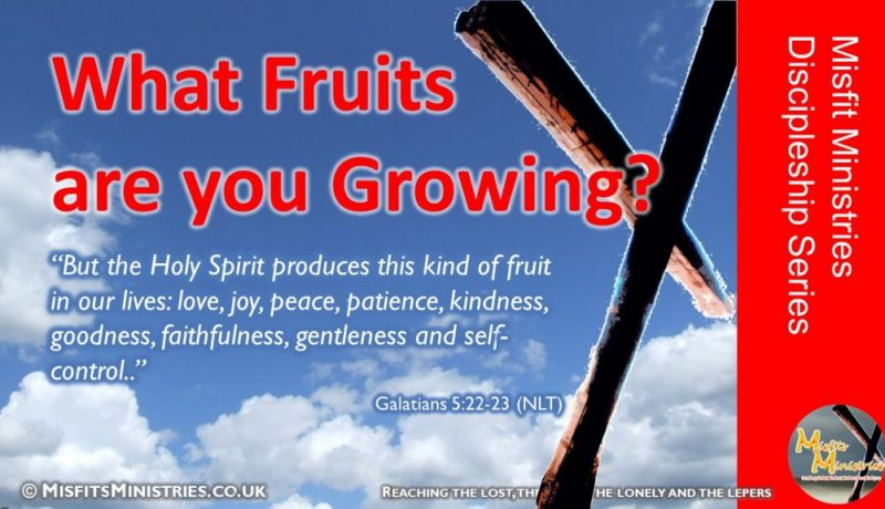 Discipleship Series 10 - What Fruits are you Growing