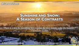 Tuesday Topic 2021wk01 - Sunshine and Snow - A Season of Contrasts