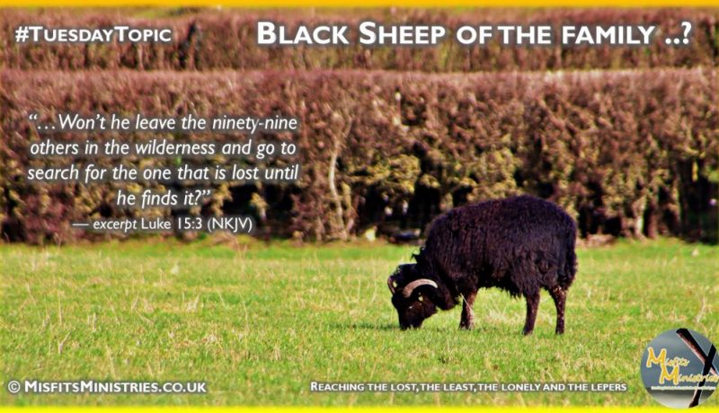 Tuesday Topic 2021wk11 - Black sheep of the family
