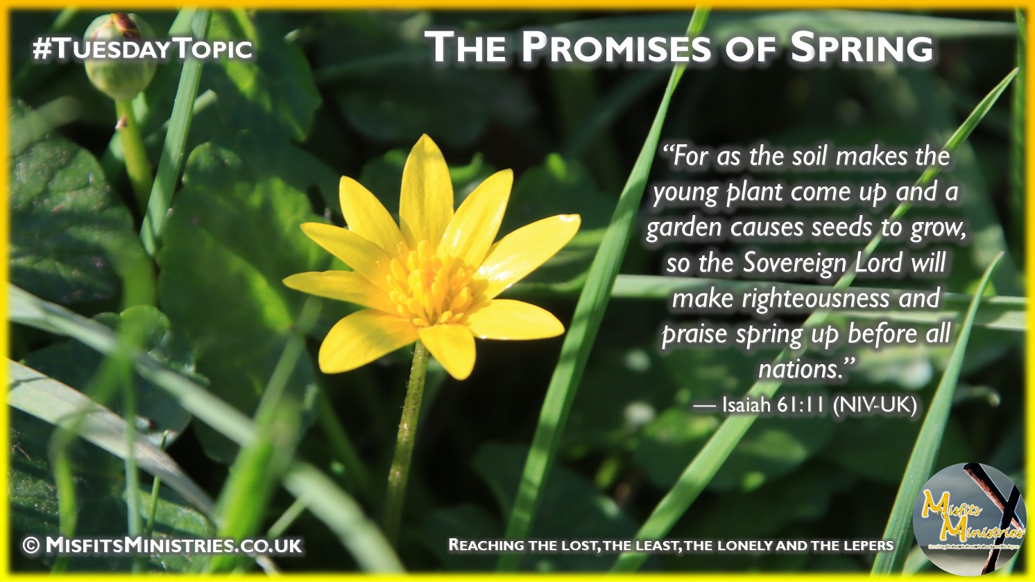 Tuesday Topic 2021wk14 - The Promises of Spring